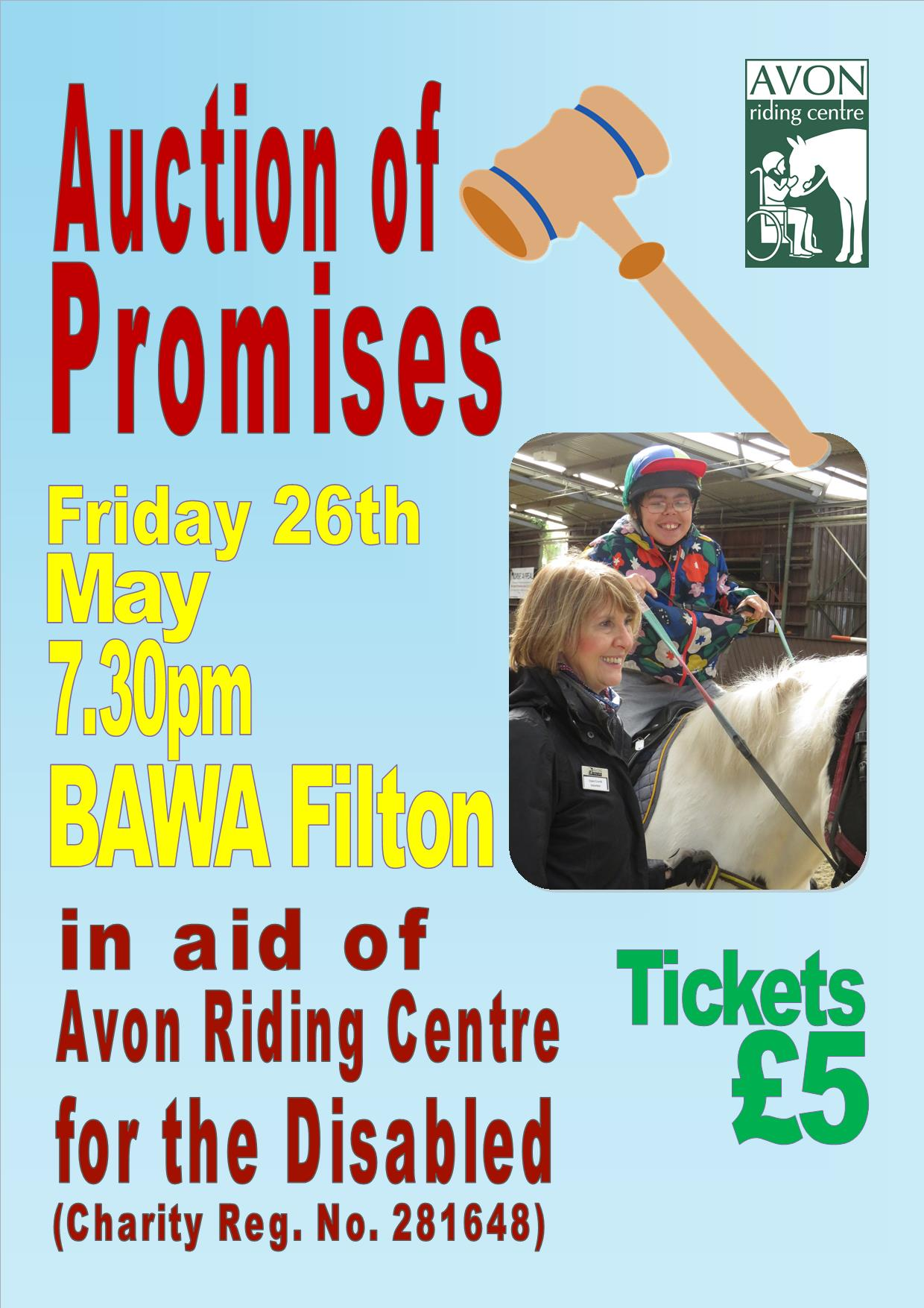 Auction of Promises Flyer